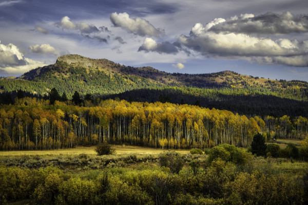 Jug Mountain Fall Splendor by Connie McClaran