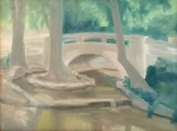 Foot Bridge at Averill Park by Curtis Green