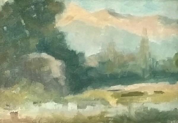 The Meadow at Santa Barbara Garden by Curtis Green