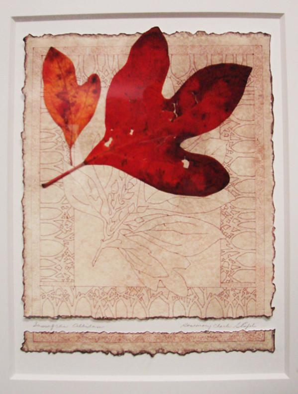 SASSAFRAS I by Rosemary Stiefel