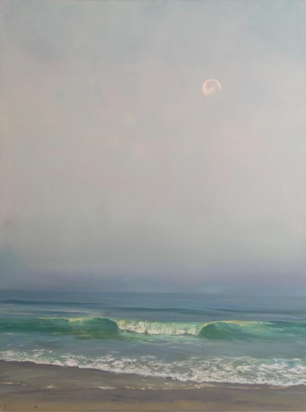 Goodbye Moon by Annie Wildey