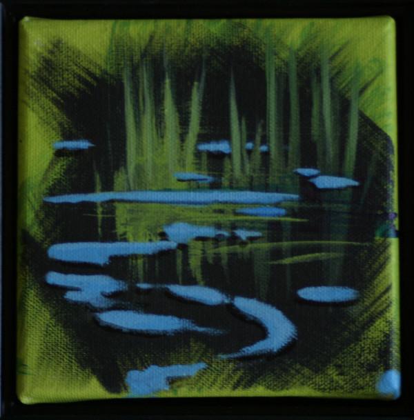 Black Water 18