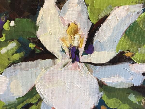 Magnolia by kathleen broaderick