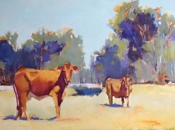 Auburn Cows by kathleen broaderick
