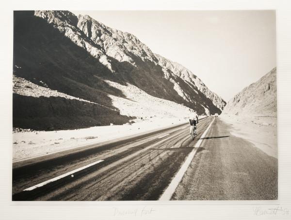 Downhill fast by Yvonne Barnett