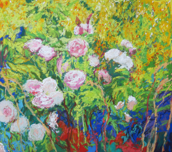 LS62: Greater Maidens Blush and Loosestrife - 29th July 2020 by Simon Blackwood