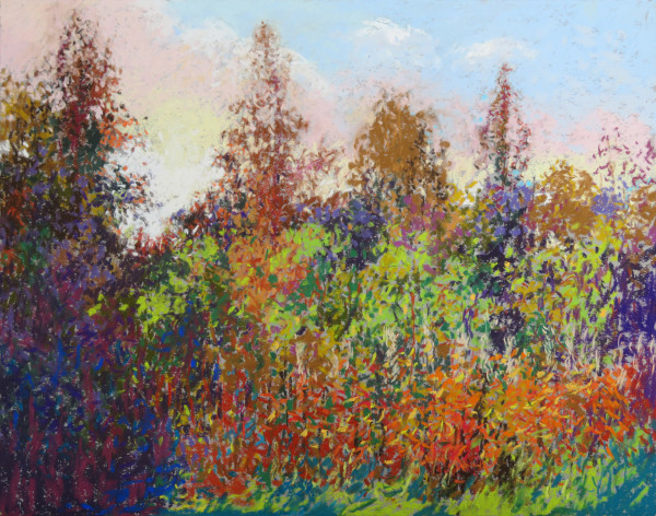 LS73: Young Birch Trees and Fireweed last sun - 5th October 2020 by Simon Blackwood