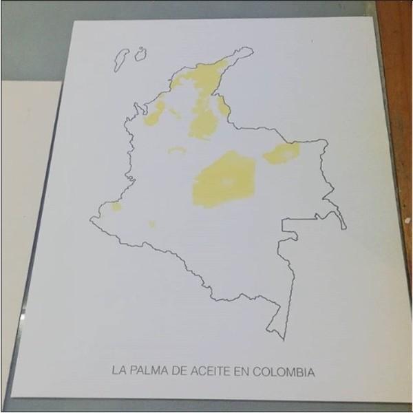 Mancha Palma by Jorge Luis Vaca Forero