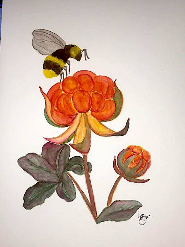 THE BEE AND THE BERRY by ALASKAN WATERCOLORS BY KAREN