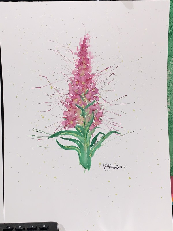 """""""Favorite Flower Fireweed"""" by ALASKAN WATERCOLORS BY KAREN"""