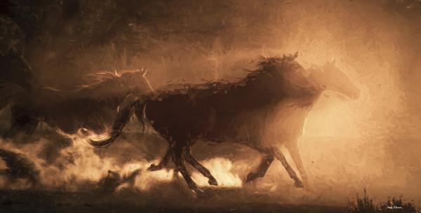 Shadow Herd by teak elmore