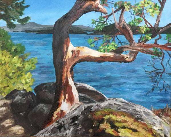 Basking by Jody Waldie