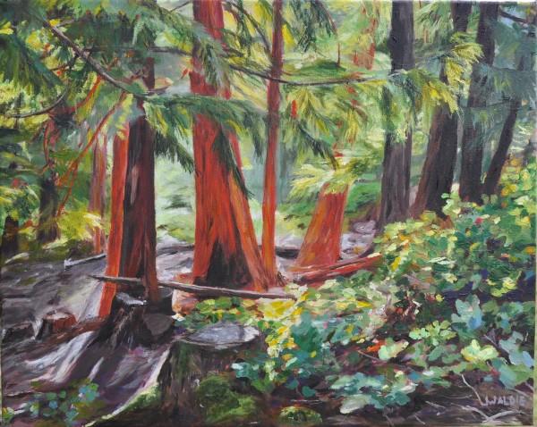 A Piece of Paradise by Jody Waldie