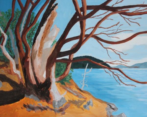 Surviving through time by Glenda King