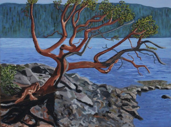 Arbutus - St John's Point by Glenda King