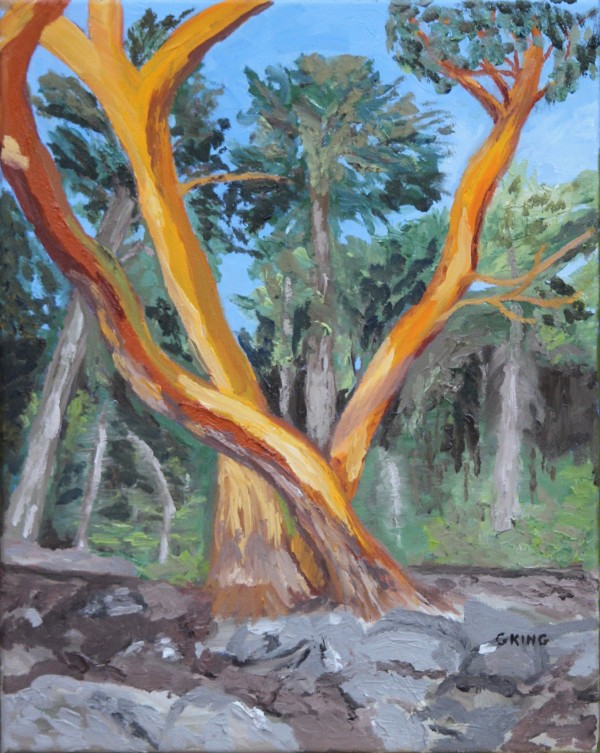 Arbutus Cluster by Glenda King