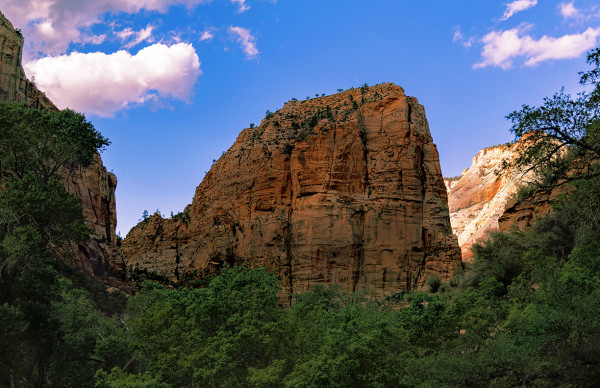 Angels Landing from the Virgin River Bank, Evening by Rodney Buxton