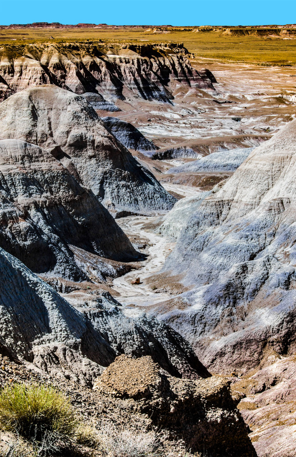 Blue Mesa, Morning by Rodney Buxton