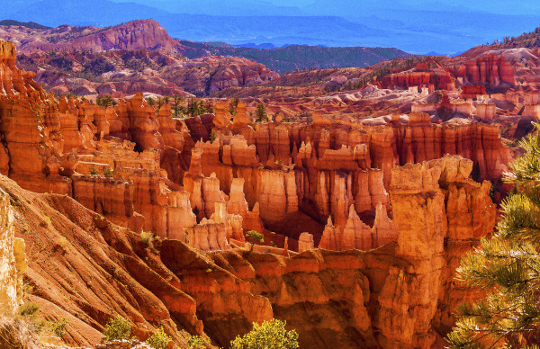 Bryce Canyon Amphitheater and Sinking Ship from Sunset Point, Morning by Rodney Buxton