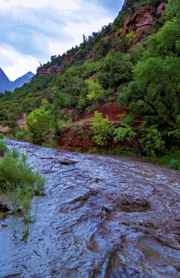 Swollen Virgin River, Morning by Rodney Buxton