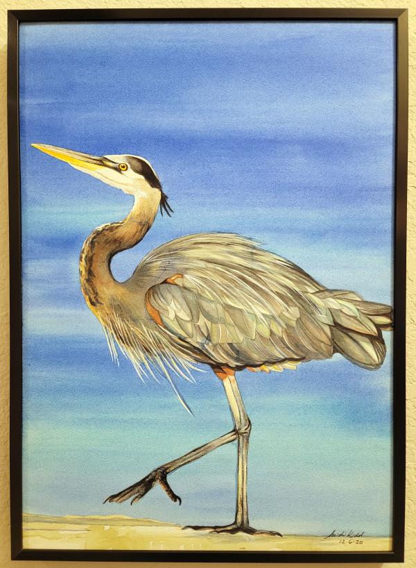 Great Blue Heron by HEIDI KIDD