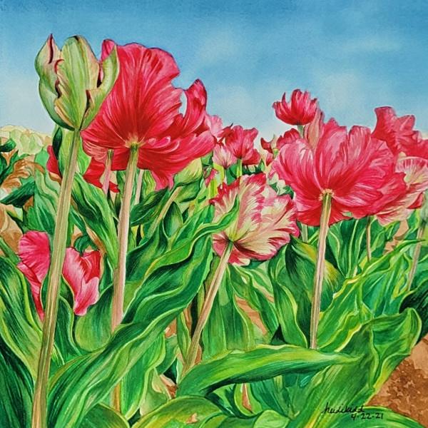 Texas Tulips Two by HEIDI KIDD