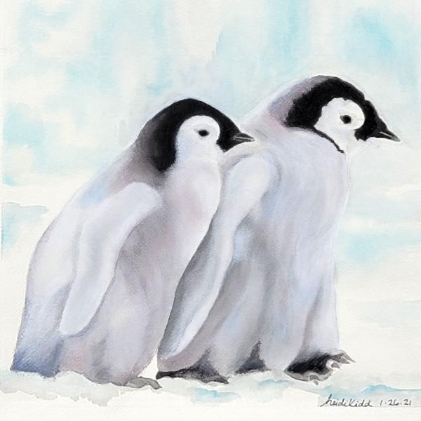 Two Emperor Penguin Chicks. by HEIDI KIDD