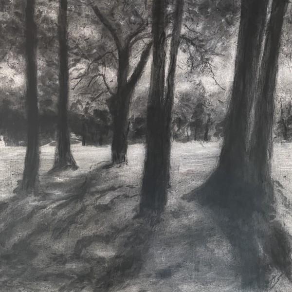 Ayr Mount Shady Spot (study) 36.07867N 79.08417W by Thomas Stevens