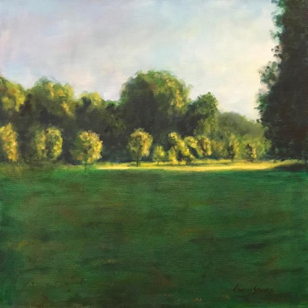 Burnside Field   36.071789N 79.095697W  (16) by Thomas Stevens