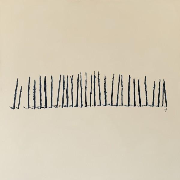 Occaneechi Remains (monochrome)  36.072242N  79.097572W by Thomas Stevens