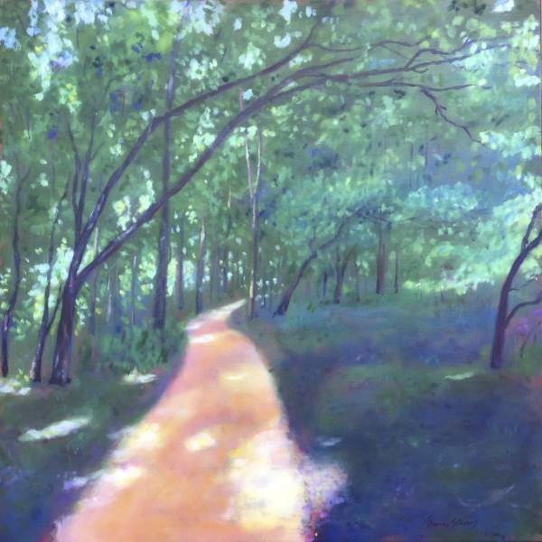 Oxbow Trail Cool    36.070714N 79.089386W by Thomas Stevens
