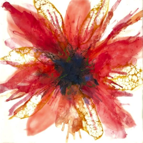Pensée Rouge by Deborah Llewellyn
