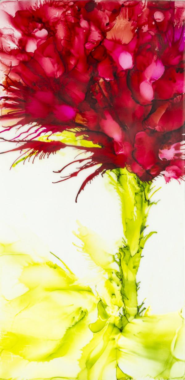 The Big Blush by Deborah Llewellyn