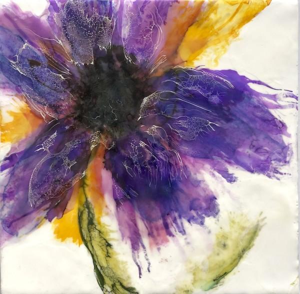 Violette by Deborah Llewellyn