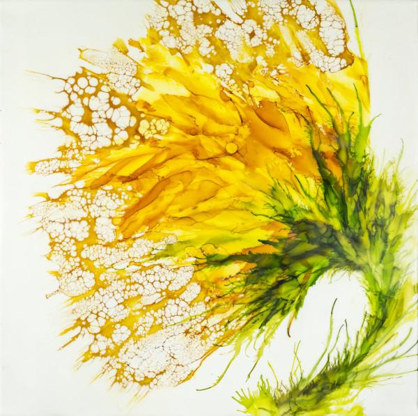 Wendy's Sunshine by Deborah Llewellyn