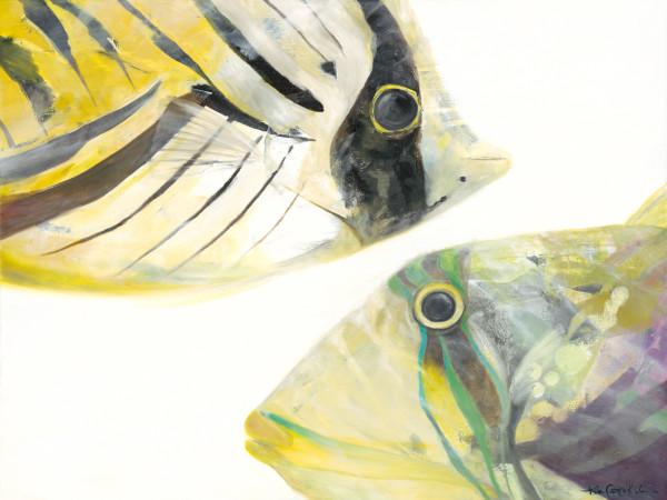 Fish 3_'Tang & Humu'_36x48克里斯蒂·藤山·科斯米德斯(Kristie Fujiyama Kosmides)设计