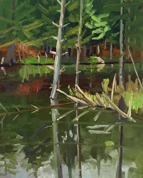 Black Pond Reflections by Elaine Lisle