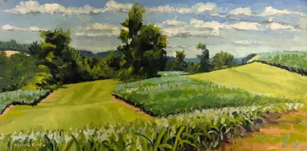 Cornfields Honker Hill Farm by Elaine Lisle