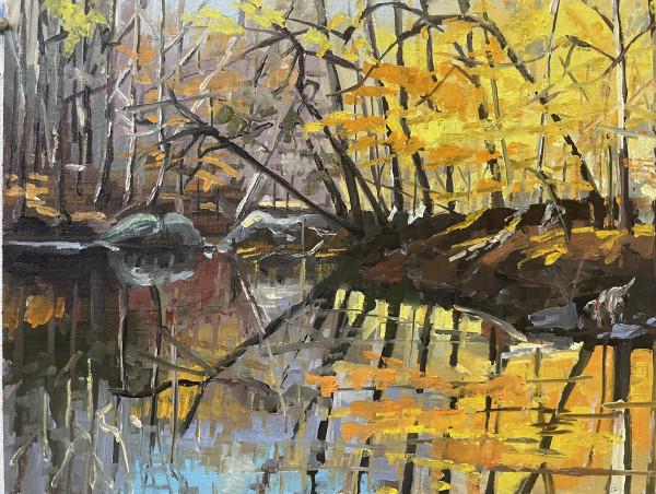 November Glow by Elaine Lisle