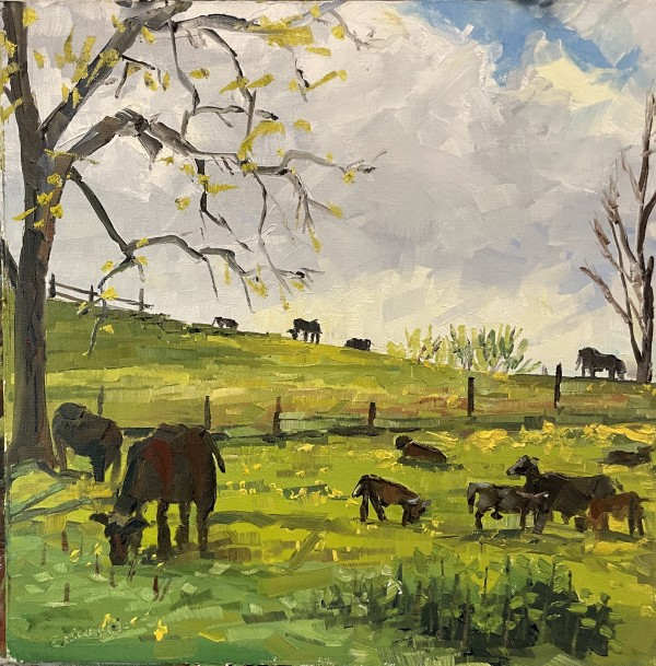 Cows & Heifers morning chow by Elaine Lisle