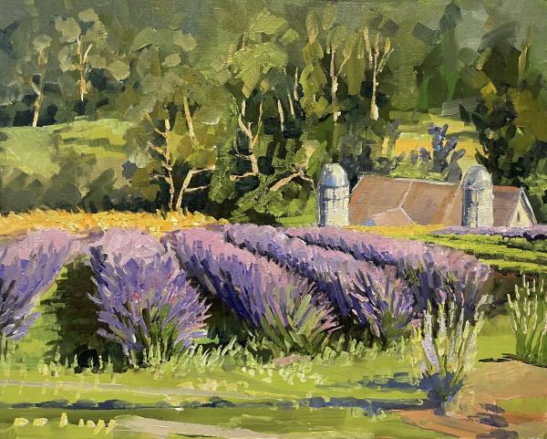 Lavender at Golden Hour by Elaine Lisle