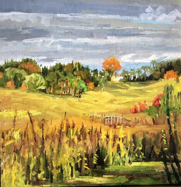 Meadow Garden by Elaine Lisle
