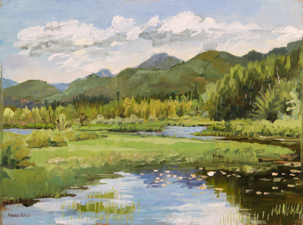 June Morning at Fish & Game Club by Elaine Lisle
