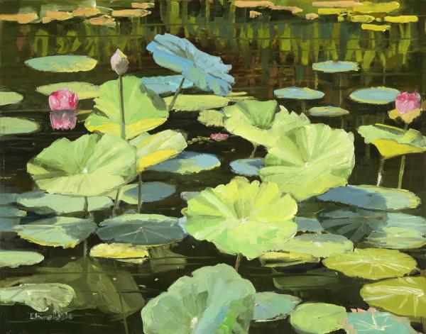 Lotus Pond Reflelctions by Elaine Lisle
