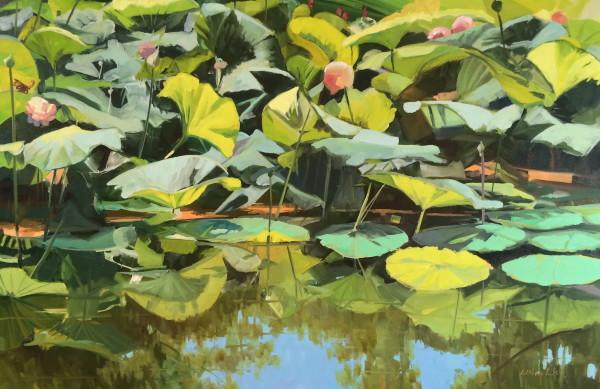 Reflections on Lotus Flowers by Elaine Lisle