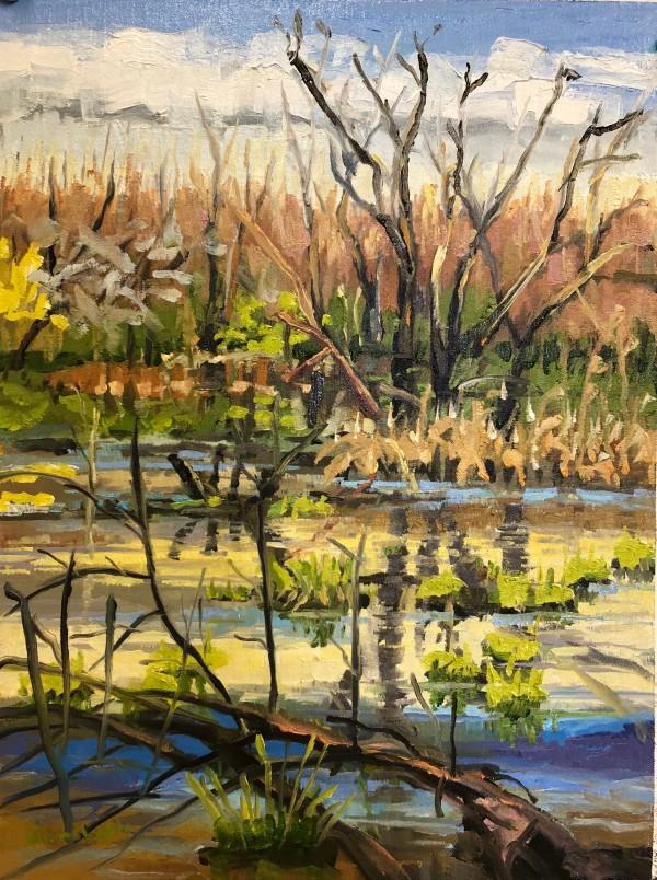 Spring Coming Marshlands Preserve by Elaine Lisle