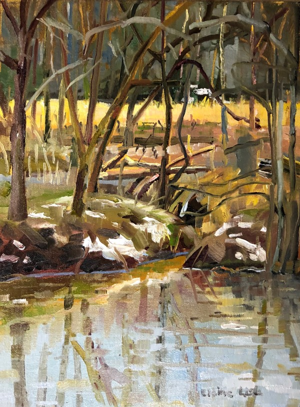 Winter Creek at Stroud Preserve by Elaine Lisle
