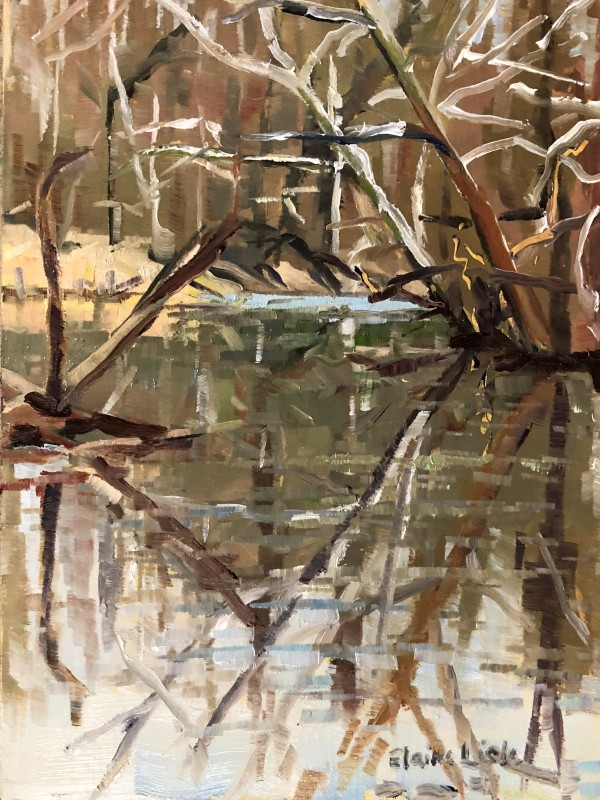 Stroud Preserve Winter Reflections by Elaine Lisle