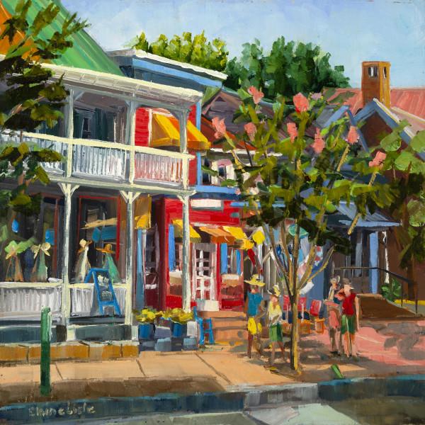 Colors on Main St St Michaels by Elaine Lisle