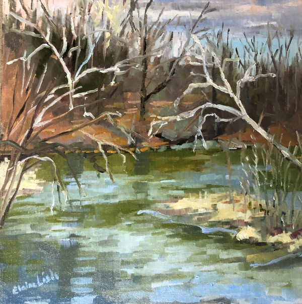 Winter Sycamores on Brandywine by Elaine Lisle
